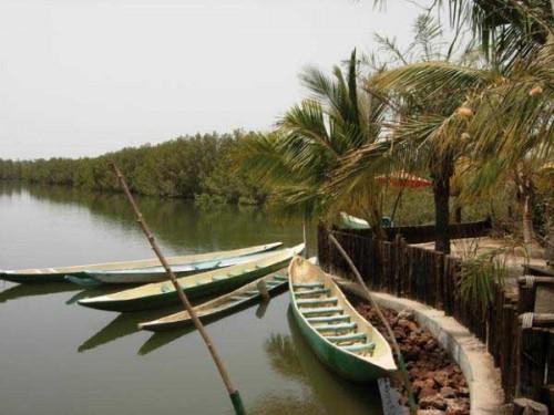 Descubre Gambia