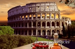 Circuito Bus Italia al Completo