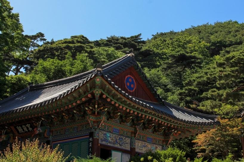 Circuito Luces de Japón y Corea