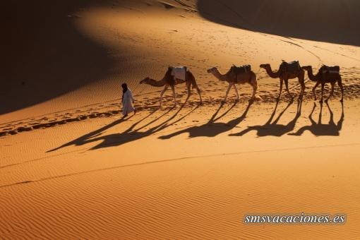 Escapada al Desierto Marruecos Fin de Año