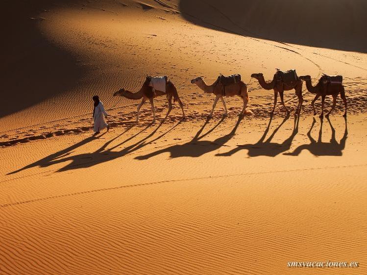 Circuito en Bus Aventura en Marruecos