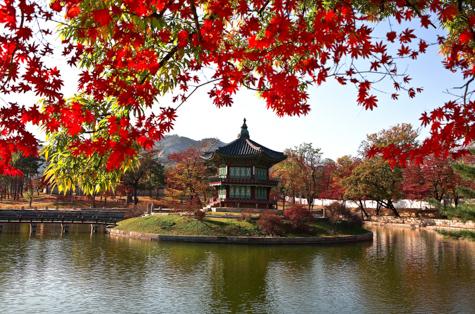 Circuito de Hiroshima a Seul