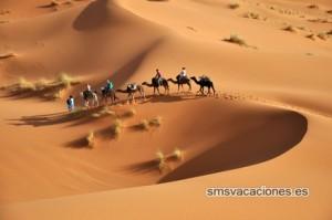 Desierto en Tunez