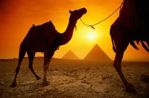 Viajar a Egipto - Circuito