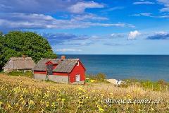 tipica casa roja de suecia