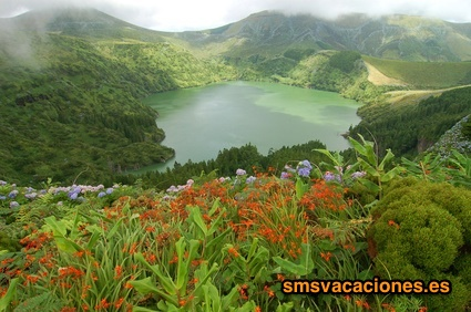 Combinado Sao Miguel,Terceira,Fayal