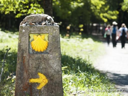 Camino (Frances) de Santiago últimos 100 Km.