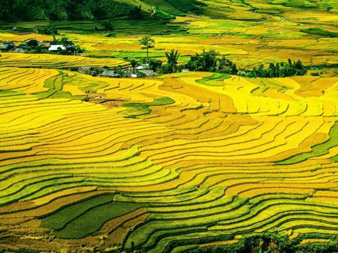 Tesoros de Vietnam y Tailandia I