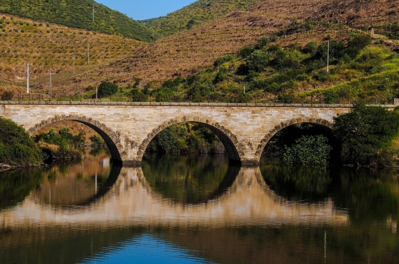Puente de Mayo, Zamora, Toro y Arribes, en autobús (II)